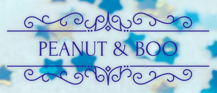 peanut and boo gifts logo