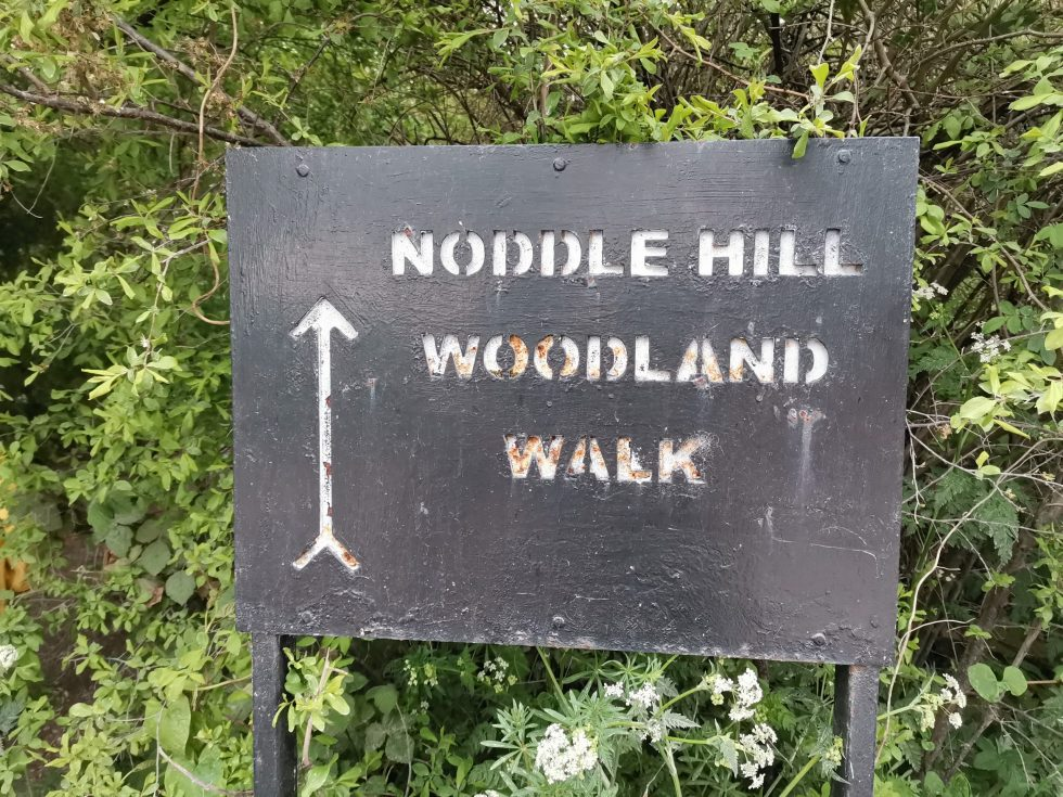 Noddle Hill Nature Reserve
