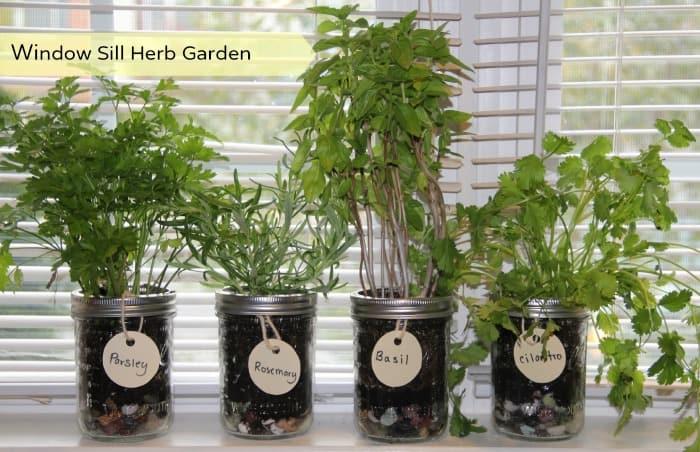 Charming Herb Garden Cover