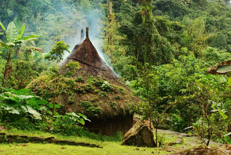 Traditional Kogi hut en route to the Ciudad Perdida