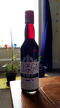 how to make sloe gin sloes home brew diy gifts alcohol bottle present home made sloe gin