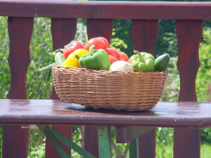 veg gift basket grow your own vegetables self sufficient lifestyle thrifty sustainability
