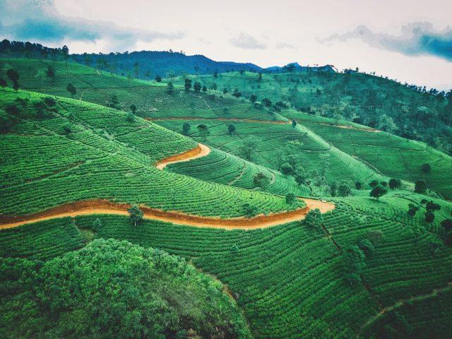 Sri Lanka Visas