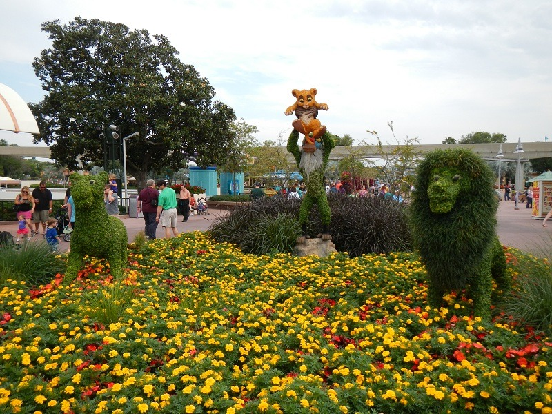 The Lion King topiary is located on the walkway down to The World Showcase