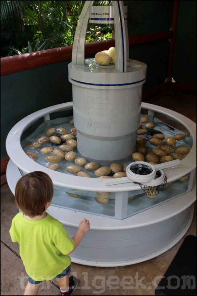 """My son was particularlly interested in this one.  You choose an egg and then """"scan"""" it for a prize"""