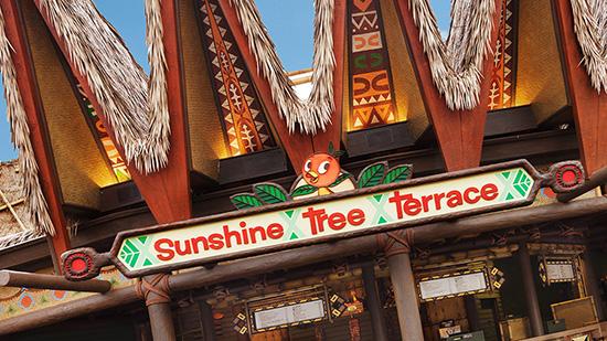 sunshine-tree-terrace-550x309
