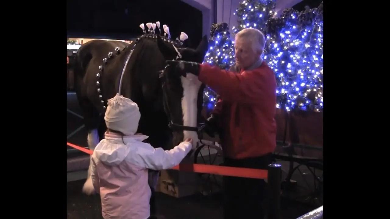 Scotland – Christmas Town | Busch Gardens Williamsburg