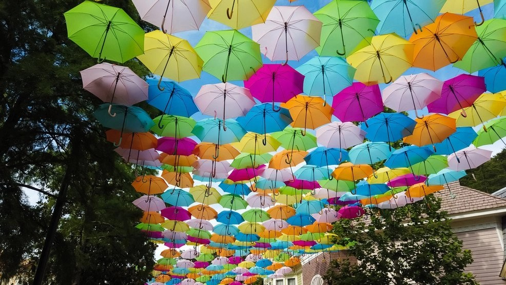 Dollywood's Flower & Food Festival: Enjoy half a million flowers, umbrella sky – WZTV