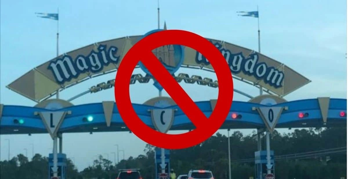 """Guest Visiting Disney World With Disabled Son Receives Shocking """"Parking Violation"""" Note"""