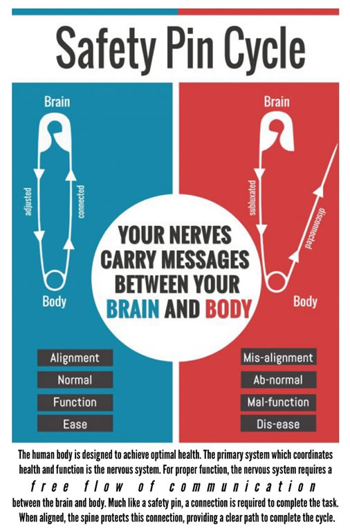 Graphic explaining the Safety Pin Cycle when the body and brain messaging is out of alignment.