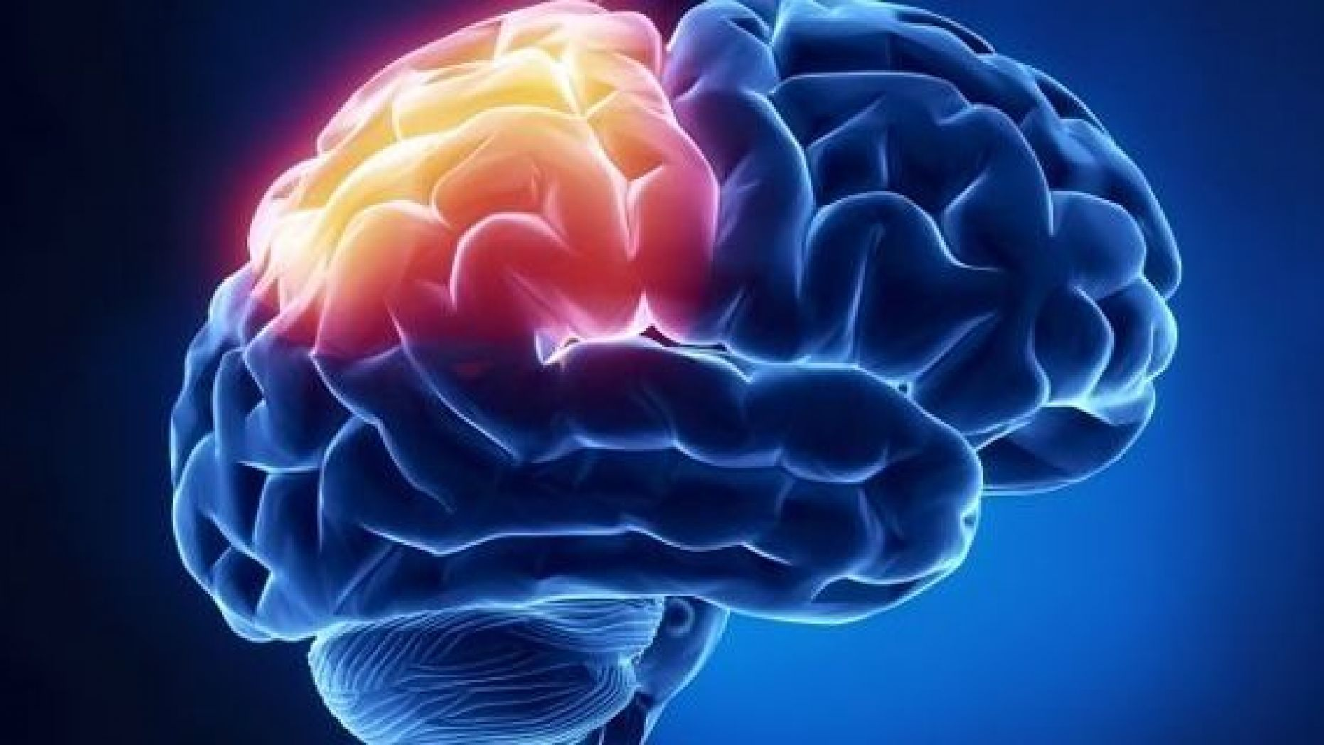 Brain-and-Addiction-Substance-Abuse