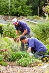 Therapist and client enjoying the health benefits of gardening at the charity Thrive