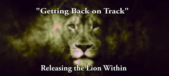 Releasing Lion Within   Getting Back on Track