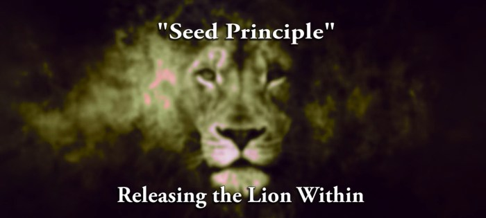 Releasing Lion Within   Seed Principle