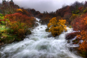 Rapid Waters