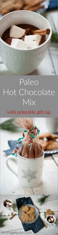 Paleo Hot Chocolate Pre-Made Mix recipe and Drink, with printable holiday gift tag