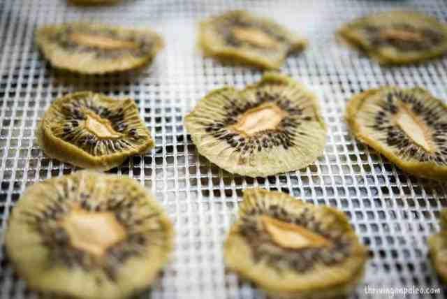 Dehydrated Kiwi Chips by Thriving On Paleo - an easy and tasty snack (Paleo, gluten-free, vegetarian, vegan, GAPS, SCD)