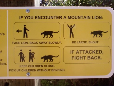 A trail sign describing what to do when confronted by a mountain lion