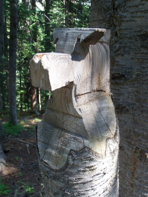 a photo of some chainsaw folk art, carved from a fir tree near an old miner's cabin at the edge of the maroon bells-snowmass wilderness area near aspen colorado while goat hunting in game management unit 12 gmu 12