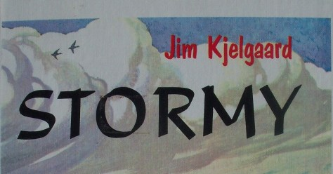 Stormy, by Jim Kjelgaard, is one of his most popular, and more collectable book titles. It is the story of an outcast labrador retriever, and his young owner. With lots of duck hunting and outdoor adventure.