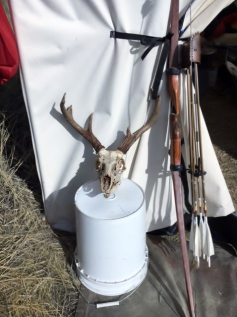 A Pope & Young Club Record Class Coues Deer Skull, next to a Custom Built Reflex Bow
