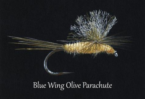 A Signed Mixed Media Print of a Blue Wing Olive Parachute Nymph Trout Fly by Charlie Manus of Marble, Colorado