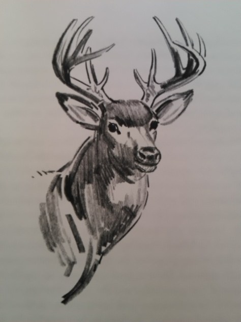 Internal Illustration of Buck White-tailed Deer by Sam Savitt, Found in the Book Dave and His Dog, Mulligan by Jim Kjelgaard