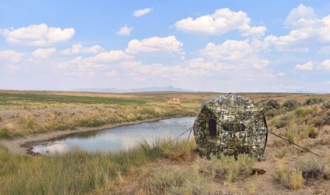 A Double Bull Wide Deluxe Ground Blind By Primos, Set Up Over A Waterhole While Bowhunting For Pronghorn Antelope In The Red Desert Of Northern Colorado. Photograph By Michael McCarty