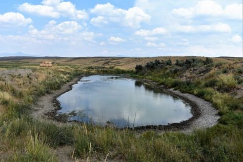 A Waterhole On The Red Desert Of Northern Colorado, Surrounded By Sagebrush And Alfalfa. Home Sweet Home, And A Main WAter Source For Pronghorn Antelope, Mule Deer, and Age Grouse. Photograph by Michael McCArty