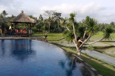 Bumi Resort pool!