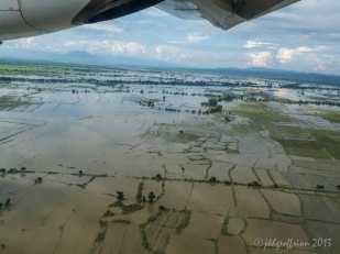 Floodes Rice Paddies