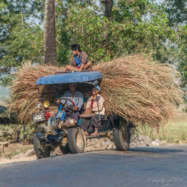 Transporting crops