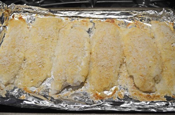 Parmesan Tilapia Fish by 3glol.net
