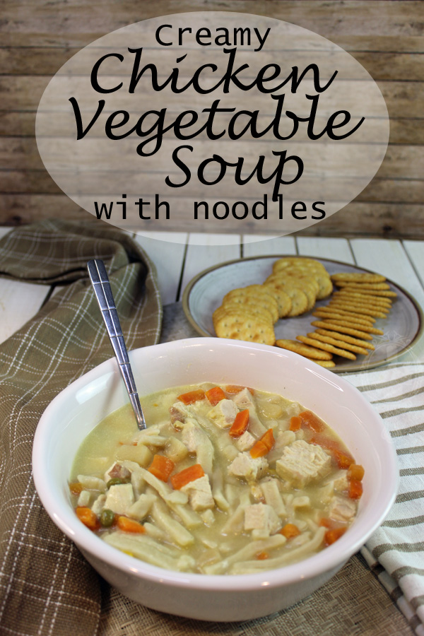A bowl of chicken vegetable soup with thick and hearty noodles up close with a plate of crackers in the background.