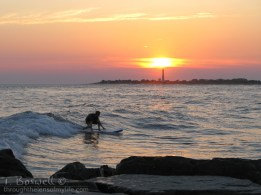 surfer at sunset. Cape May, NJ