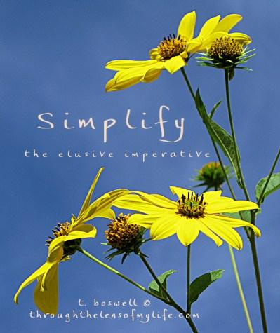 Simplify - color