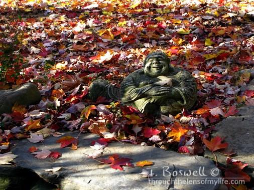 Leafy backyard Buddha wide