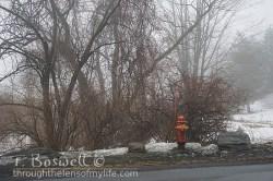 DSC06106 2-hydrant-snow-mist-3x2cp-sm-terry-boswell-wm