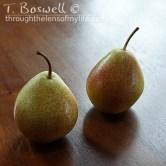 DSC07298-2-pair-pear-sunshine-wood-1x1cp-terry-boswell-wm