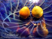 DSC07495-2-pair-pears-cobalt-glass-4x3cp-terry-boswell-wm