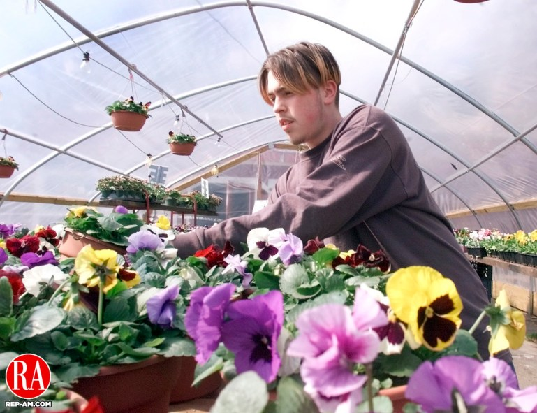 NAUGATUCK,CT. 04/03/01--0403SV01.01--Ed Raimo of Naugatuck takes care of his spring flowers at the Farmers Market on Rubber Ave. in Naugatuck on Tuesday. People are looking for flowers to plant now that the warmer weather is arriving.    Steven Valenti Photo