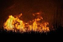 Burning off begins to bathe all in orange.