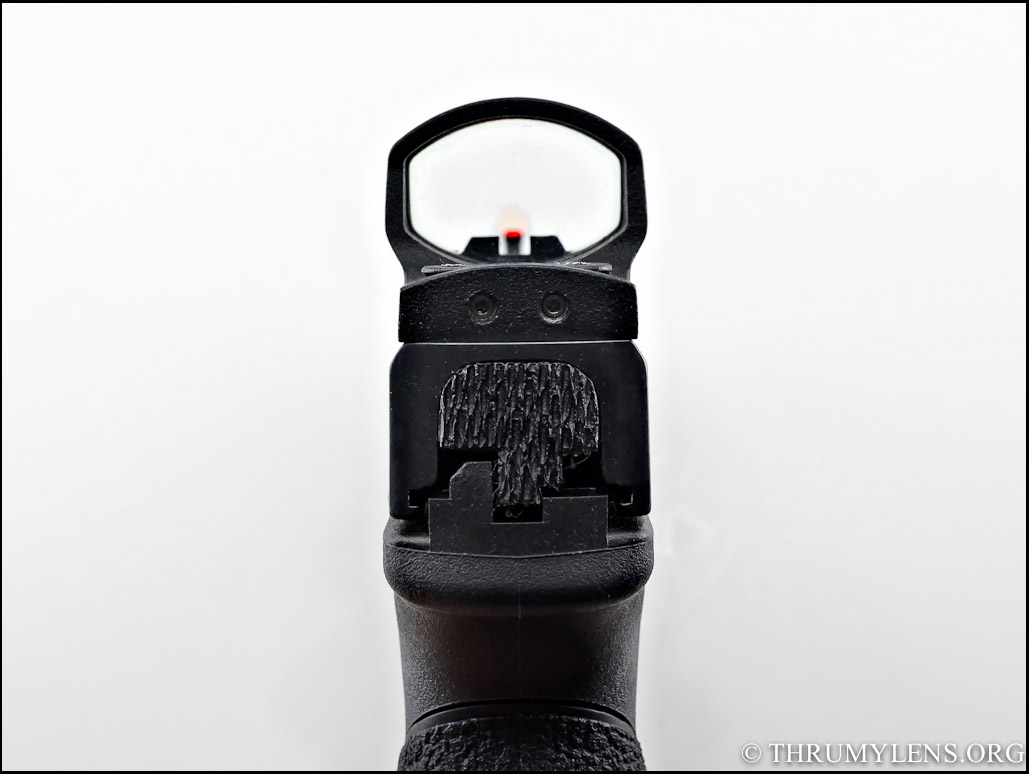 Review of the Leupold Deltapoint Reflex Sight | ThruMyLens
