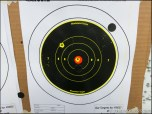 My First Time Shooting My AR-15 From 200 Yards