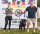 2014 Nashville Rottweiler Klub Breed Show