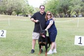 The 2015 South Florida Rottweiler Klub RKNA Breed Show