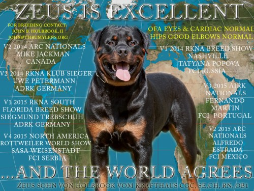 ZEUS-POSTER-AWESOME1