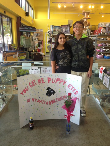 Creative Homecoming Invites The Paw