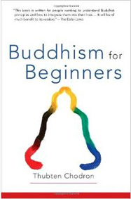 Cover of Buddhism for Beginners.