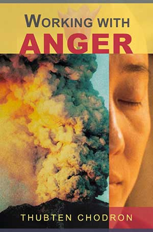 Cover of book 'Working with Anger'.
